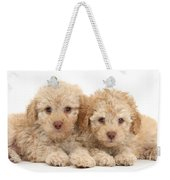 Toy Labradoodle Puppies Weekender Tote Bag