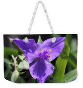Tradescantia Named Andersonia Mauve Weekender Tote Bag