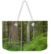 Trail Through Redwoods Weekender Tote Bag