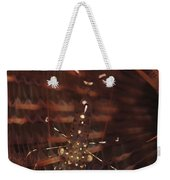 Transparent Shrimp On A Brown Feather Weekender Tote Bag