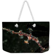 Transparent White And Red Harlequin Weekender Tote Bag