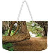 Tree And Trail Weekender Tote Bag