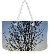 Tree At Sunset Weekender Tote Bag