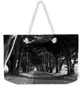 Tree Canopy Promenade Road Drive . 7d9977 . Black And White Weekender Tote Bag