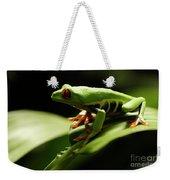 Tree Frog 13 Weekender Tote Bag