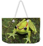 Tree Frog Hyla Rubracyla, Colombia Weekender Tote Bag