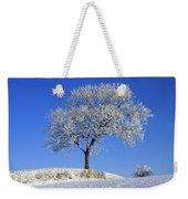 Tree In Winter, Co Down, Ireland Weekender Tote Bag