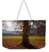 Tree With Autumn Leaves Weekender Tote Bag