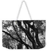 Trees Beautiful Trees Weekender Tote Bag