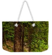 Trees By The Stream Weekender Tote Bag