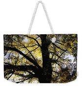 Trees During Autumn Weekender Tote Bag