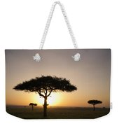 Trees On The Savannah With The Sun Weekender Tote Bag