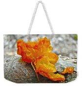 Tremella Mesenterica - Orange Brain Fungus Weekender Tote Bag
