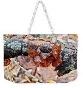 Tremella Mesenterica - Reddish Brown Brain Fungus Weekender Tote Bag