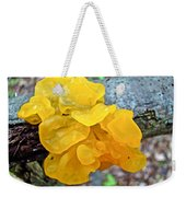 Tremella Mesenterica - Yellow Brain Fungus Weekender Tote Bag