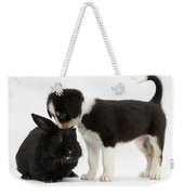 Tricolor Border Collie Pup With Black Weekender Tote Bag