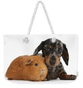 Tricolor Merle Dachshund Pup And Red Weekender Tote Bag