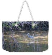 Tricolored Heron 1 Weekender Tote Bag