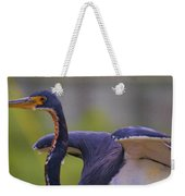 Tricolored Heron About To Fly Weekender Tote Bag