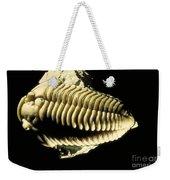 Trilobite Fossil Weekender Tote Bag