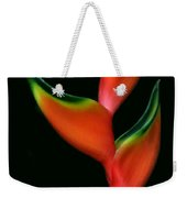 Tropical Holiday Card Weekender Tote Bag