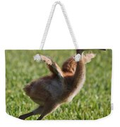 Trying To Fly Weekender Tote Bag