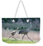 Trying To Keep Up Weekender Tote Bag