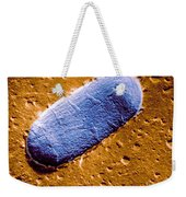 Tuberculosis Bacillum Weekender Tote Bag by Science Source