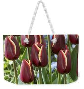 Tulip Tulipa Sp Key West Variety Flowers Weekender Tote Bag