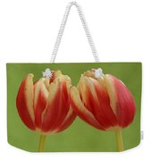 Tulip Tulipa Sp Pair, Hoogeloon Weekender Tote Bag
