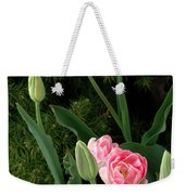 Tulips And Evergreen Weekender Tote Bag