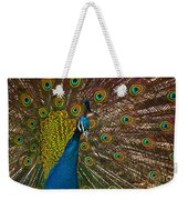 Turquoise And Gold Wonder Weekender Tote Bag