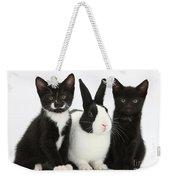 Tuxedo Kittens With Dutch Rabbit Weekender Tote Bag