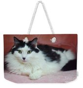 Tuxy In Repose Weekender Tote Bag