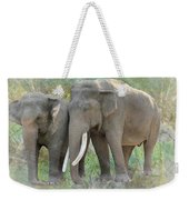 Twin Elephants Weekender Tote Bag