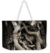 Twisted Dreams Weekender Tote Bag by Mary Machare
