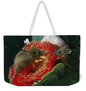 Two Australian Honey Possums Feed Weekender Tote Bag
