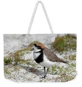 Two-banded Plover Charadrius Weekender Tote Bag