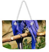 Two Blue Parrots Weekender Tote Bag