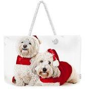 Two Cute Dogs In Santa Outfits Weekender Tote Bag