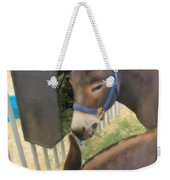 Two Donkeys Eating Weekender Tote Bag by Donna Munro