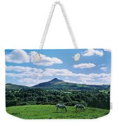 Two Horses Grazing In A Field Weekender Tote Bag