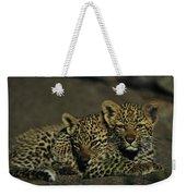 Two Sleepy Four-month-old Leopard Cubs Weekender Tote Bag