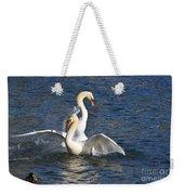 Two Swans Playing Weekender Tote Bag
