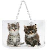 Two Tabby Kittens Weekender Tote Bag