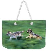 Two Wolves Running Through Meadow Weekender Tote Bag