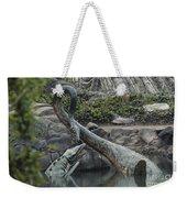 Tylosaurus And Elasmosaurus Weekender Tote Bag