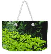 Umbrella Of Trees In Forest Weekender Tote Bag