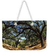 Under The Oak Canopy Weekender Tote Bag