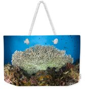 Underside Of A Table Coral, Papua New Weekender Tote Bag